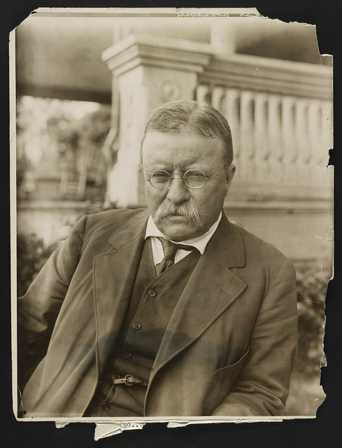 Roosevelt of to-day