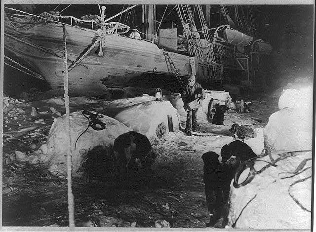 Shackleton's expedition to the Antarctic faithful dogs being fed in the ice kennel, while Endurance was stuck fast.