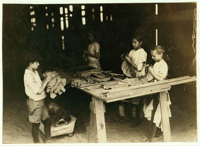 "10 year old leaf boy and three ""stringers"" 10, 12, and 13 years old. Tobacco shed of American Sumatra Tobacco Co. In these two sheds were 41 girls and boys from 10 to 15 years, and only 24 girls and women of 16 years and up. The leaf-boys get $1.50 a day and some of the stringers of 10 and 12 make $1.20 a day, according to the Supt.  Location: S[outh] Windsor, Connecticut / L.W. Hine."