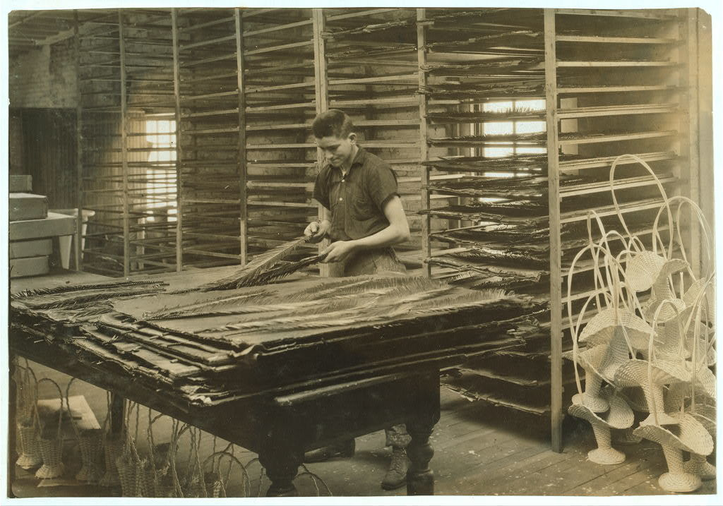 15-year old boy sorting cycas leaves, Boston Floral Supply Co., 347-357 Cambridge Street. Said to be the only flower factory in Massachusetts.  Location: Boston, Massachusetts / Lewis W. Hine.