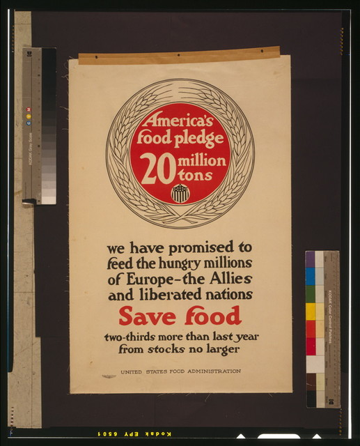 America's food pledge, 20 million tons / The Carey Printing Company, New York.