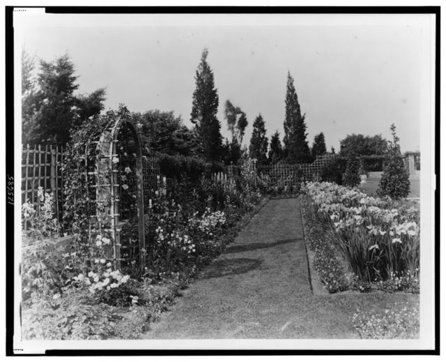 "[""Beacon Hill House,"" Arthur Curtiss James house, Newport, Rhode Island. Blue Garden flower border and trellis]"