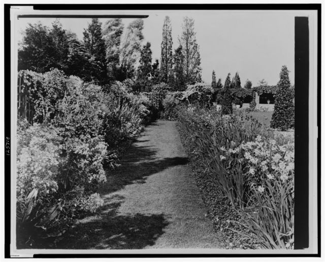 "[""Beacon Hill House,"" Arthur Curtiss James house, Newport, Rhode Island. Blue Garden flower border]"