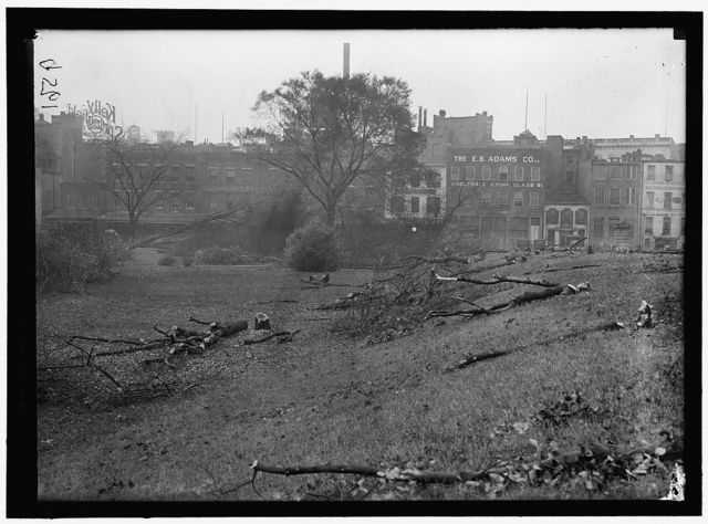 DISTRICT OF COLUMBIA PARKS. CUTTING TREES ON MALL SITES FOR WAR BUILDINGS