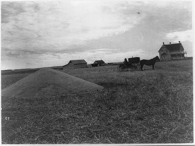 Farmer with horse and wagon in front of new and old homestead, 1917, Canada