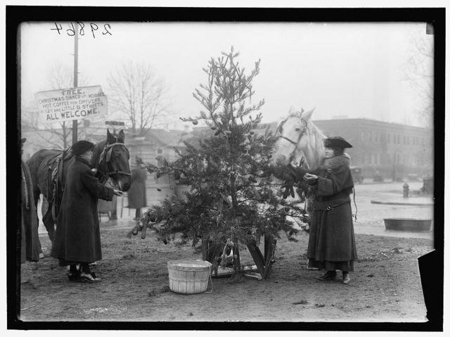 CHRISTMAS TREE FOR HORSES
