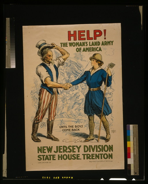Help! The Woman's Land Army of America, New Jersey Division, State House, Trenton / C.D. Gibson ; Greenwich Litho. Co., N.Y.