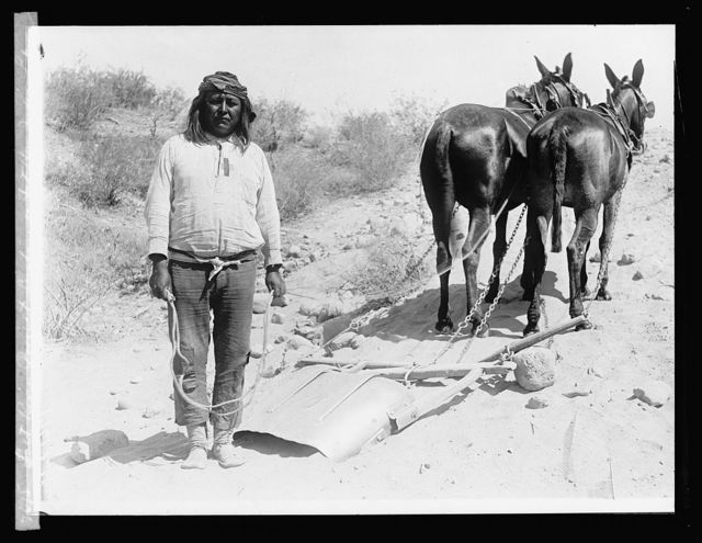 Salt River Project, [Arizona], Cushong or Fat Hen[,] Indian laborer