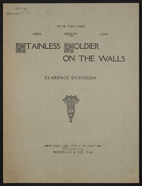 Stainless soldier on the walls