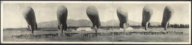 Balloons at rest, Arcadia, Cal.
