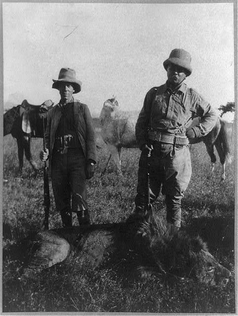 Col. Roosevelt, Tarlton, and the big lion