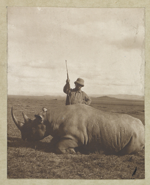 Col. Roosevelt with his big bull rhino