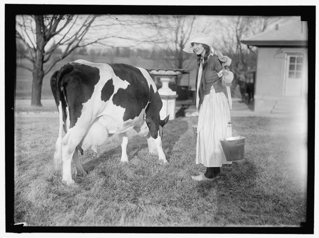 ECKLES, VIRGINIA. IN DUTCH DAIRY-MAID COSTUME, WITH COW