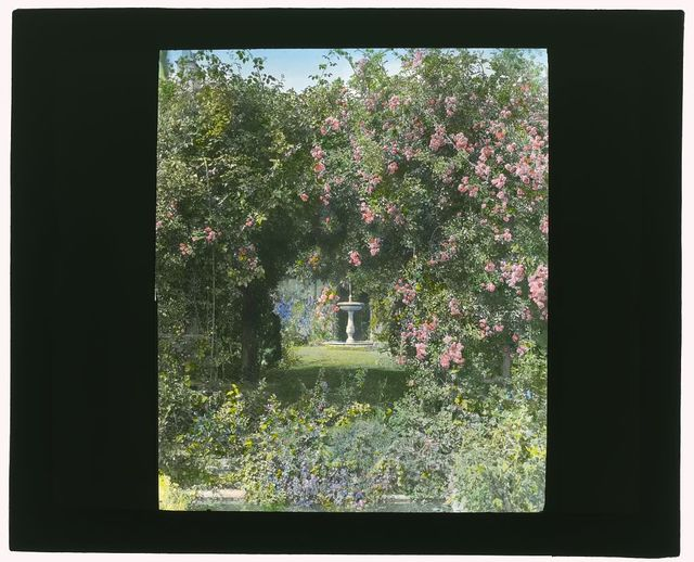 "[""Willowbank,"" Joseph Coleman Bright house, 624 Morris Avenue, Bryn Mawr, Pennsylvania. Arbor in rose garden]"