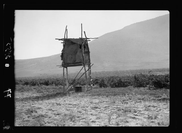 Agriculture, etc. A watch-tower on stilts. A vineyard at the foot of Mt. Tabor