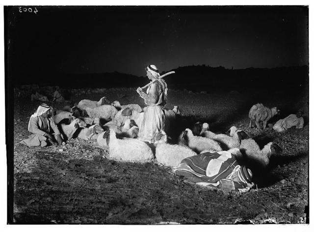 """Agriculture, etc. Shepherd scenes. """"While shepherds watched their flocks."""" Night scene showing Bethlehem in distance"""