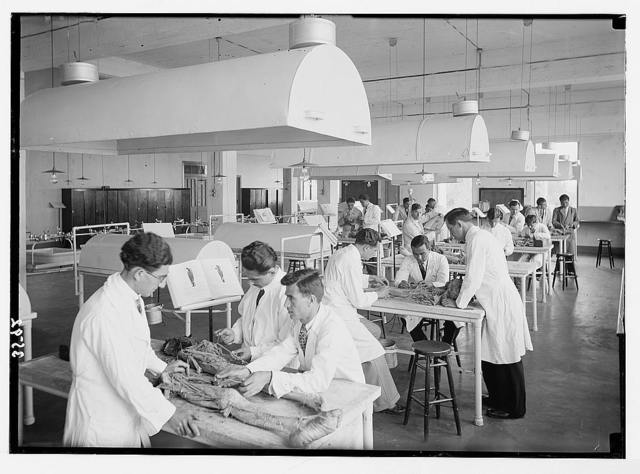 American University. Beirut, (A.U.B.). Classroom. New medical bldg. [i.e., building] showing students in dissecting class
