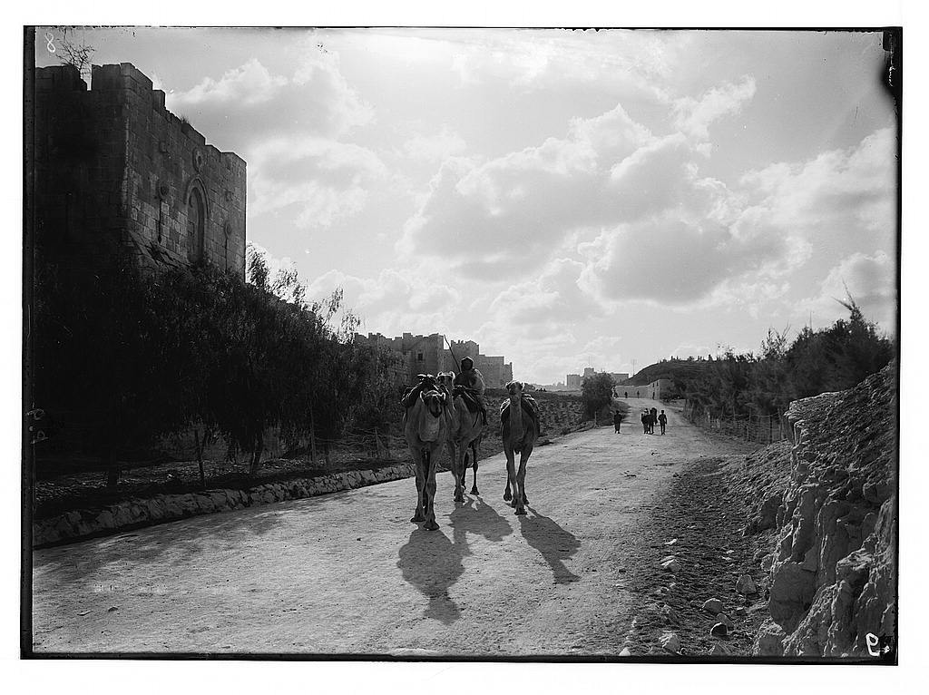 Around the city wall [Jerusalem]. Gordon's Calvary & the north wall. Bedouin camels in foreground