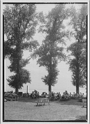 Beach at Chappel Point, Maryland. Picnic benches and trees, Chappel Point
