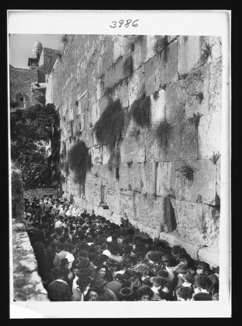 [Crowds on Atonement Day at Western Temple wall. Jew's wailing place]