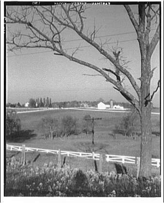 Farming scenes. Farm scene in Maryland