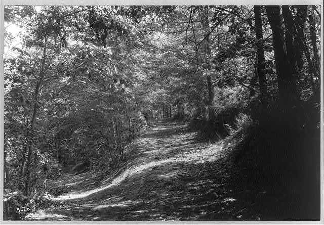 [Four views in western North Carolina: road to Mt. Meadow's Inn]