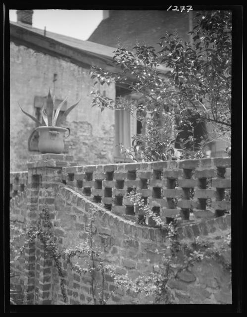 """Garden wall (""""Green Shutter"""" patio), New Orleans"""