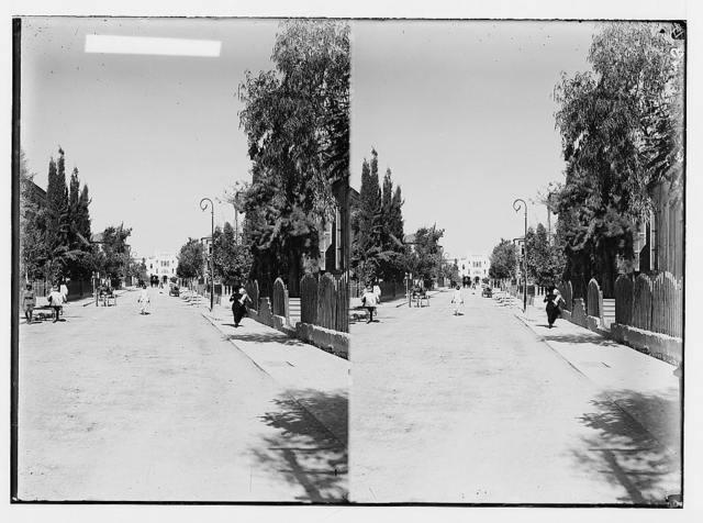 Jewish colonies and settlements. Tel Aviv. Herzl Avenue