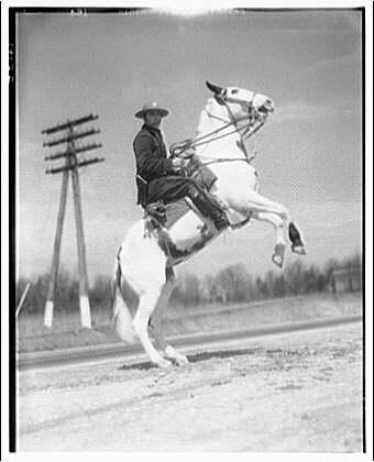Maryland mounted police. Mounted policeman III