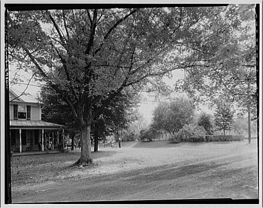 Miscellaneous houses. View of house and surrounding grounds