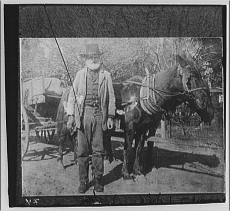 Miscellaneous subjects. Man standing in front of wagon drawn by two horses