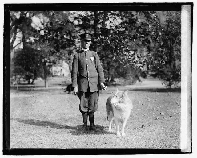 Policeman standing in a park holding a dog by the leash