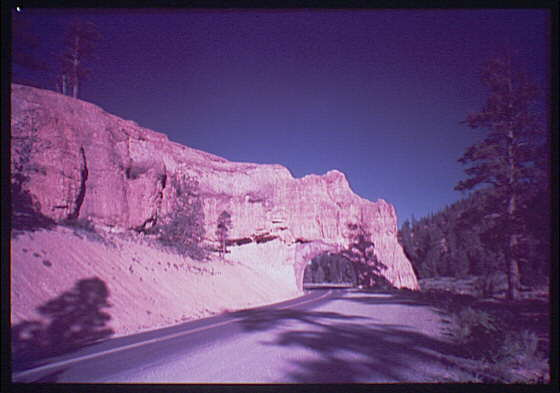 Red Canyon near Highway 12, close to Panguitch, Utah. Road with natural tunnel in Red Canyon II