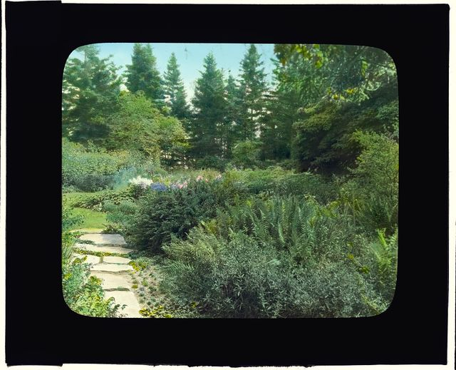 "[""Reef Point,"" Beatrix Jones Farrand house, Bar Harbor, Maine. Fieldstone pathway to bench]"