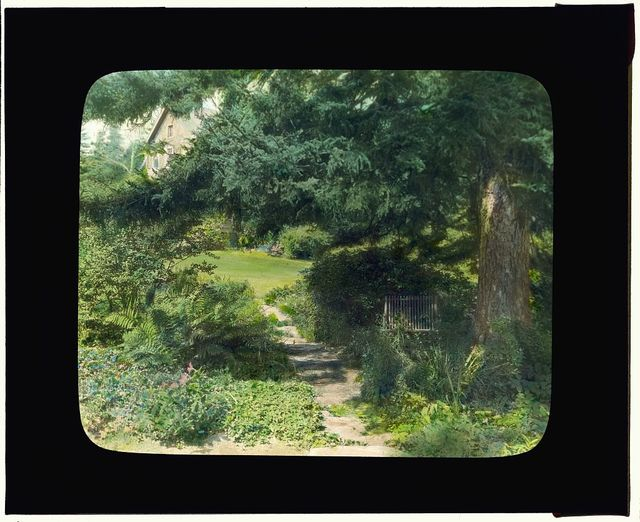 "[""Reef Point,"" Beatrix Jones Farrand house, Bar Harbor, Maine. Pathway to house]"