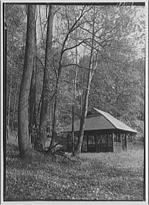 Rock Creek Park. Raking leaves and fall scenes II