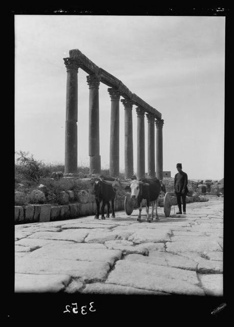 Ruins of Jerash (Gerasa). Jerash, colonnade along Main Street. An ancient type ox cart on pavement