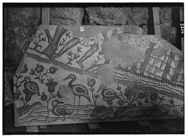 Ruins of Jerash (Gerasa). Jerash mosaic. Section showing river, water-fowl and flora.