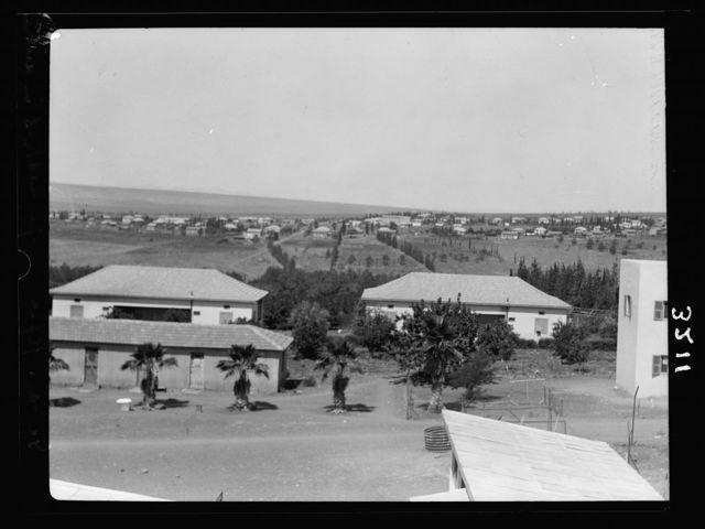 """The Keren Hayesod. Agricultural Colonies on Plain of Esdraelon """"The Emek."""" Geva and Kafr Yecheskel. Dairy colonies"""