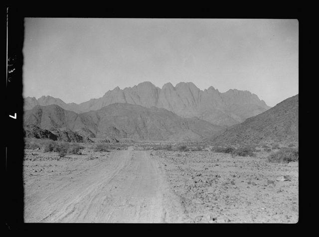 To Sinai by car. Wadi Feiran. Approaching Gebel Serbal