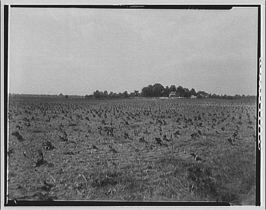 Waldorf, Maryland and vicinity. Plowed field
