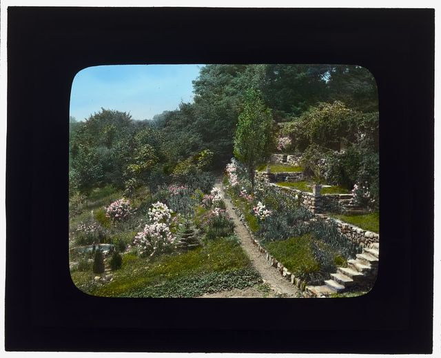 """[""""Fenimore,"""" James Stetson Metcalfe house, Bedford Hills, New York. Hillside terracing to Lake Marie]"""