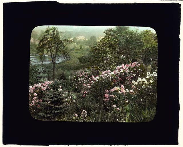 """[""""Fenimore,"""" James Stetson Metcalfe house, Bedford Hills, New York. View to Lake Marie from terraced garden]"""