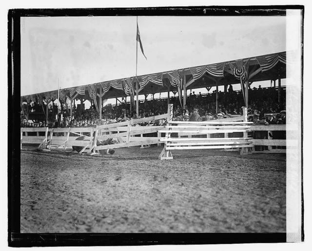 Horse show, 1921, a spill