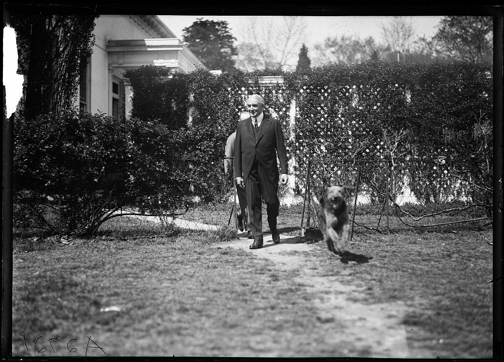 """[President Harding and dog """"Laddie Boy"""" at White House, Washington, D.C.]"""