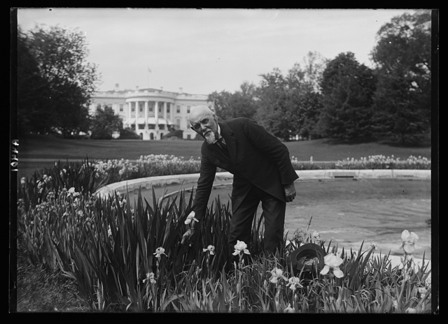 "Chas. Lee Patton, General ""handy man"" of the White House, who has known Pres. Harding since the Chief Exec. was 12. Was gardner for Dr. George T. Harding, the Pres's father in Marion, Ohio"