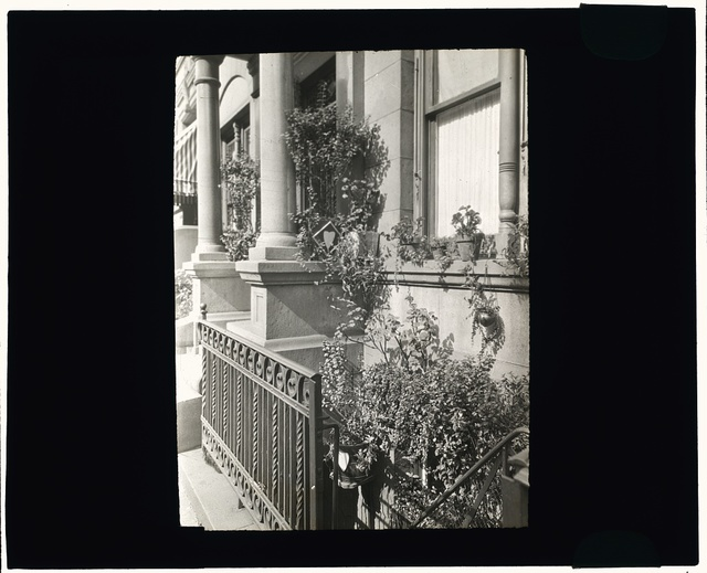 [Janitor apartment. 137 East 30th Street, New York, New York. Stairwell garden]
