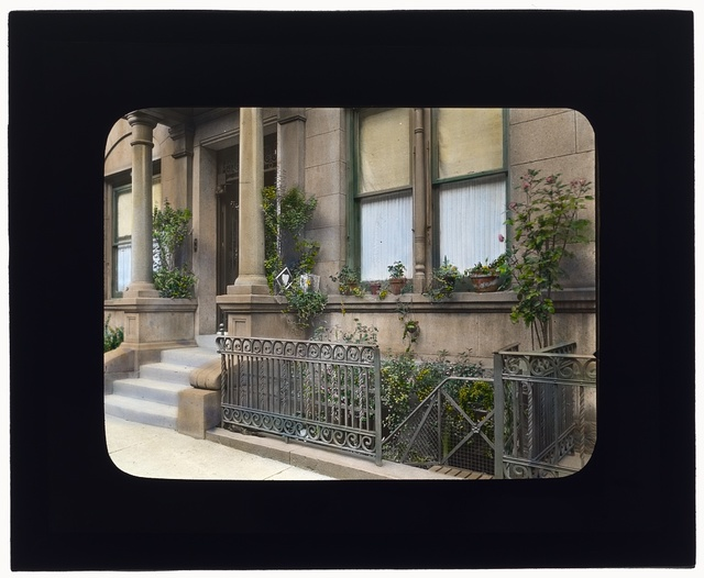 [Janitor apartment, 137 East 30th Street, New York, New York. Stairwell garden]