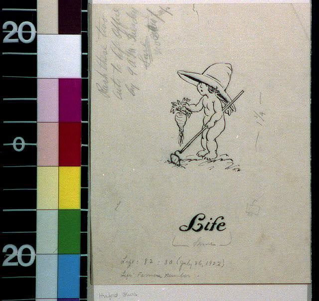 [Baby gardener in hat with carrot and hoe]