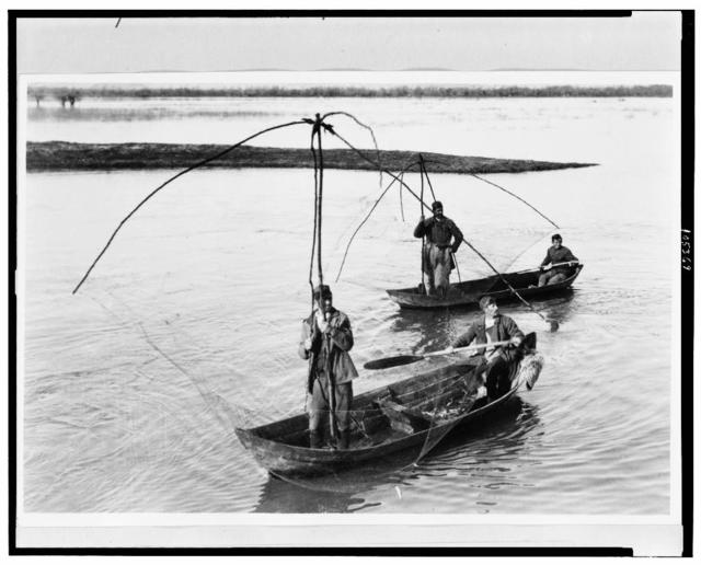 [Four men in two row boats netting fish in Montenegro]